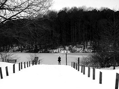 i call you mr. whisper (meredith markleigh) Tags: trees winter blackandwhite lake snow ice nature water maryland posts distance far russ howardcounty mrwhisper
