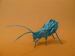 Brian Chan. Leaf Katydid (Textori) Tags: leaf origami brian chan katydid textori