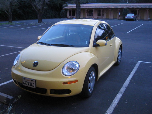 Yellow Bug!
