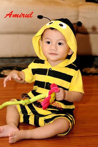 Amirul Bee 9