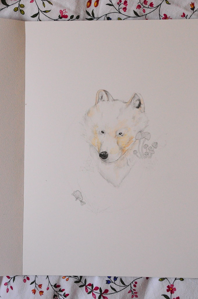 Arctic wolf in progress