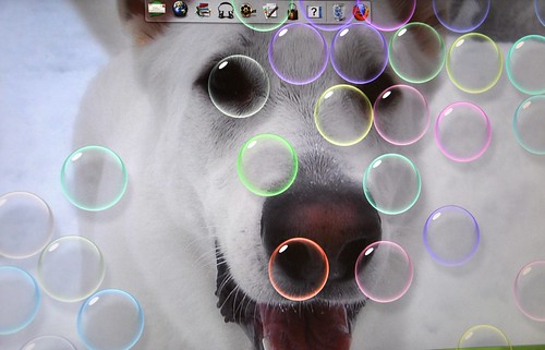 my background is Sam - I think he would have liked bubbles