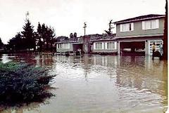 FLOOD_1 (etgeek (Eric)) Tags: permanentebypass creek muddywater carmelterrace blachschool 1983 flood losaltos losaltosfire lafd losaltospublicworks santaclaracountyfloodcontrol wash mud permanentecreek 9682742 altameaddrive