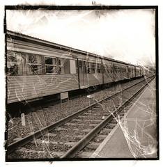 En gare (joel lintz) Tags: bw 6x6 train gare nb lubitel neopan acros trame