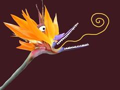 Plant Monster 02
