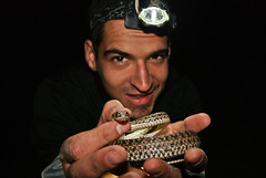 with a young Malpolon monspessulanus (David Herrero Glez.) Tags: madrid animals snake sony culebra alpha 230 herpetology reptil coluber monpellier bastarda malpolon monspessulanus vision:people=099 vision:face=099 vision:portrait=099 vision:outdoor=0806