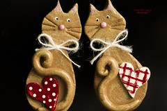 eye ♥ contact (mariola aga) Tags: valentinesday cats decoration magnets homemade hearts eyecontact art saariysqualitypictures thegalaxy