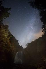 Milky Way waterfall (masahiro miyasaka) Tags: autumn tree japan night canon stars wonder star waterfall with competition fisheye galaxy astrophotography oneshot milkyway   earthandsky  sigma15mmf28exdgfisheye  eos5dmark