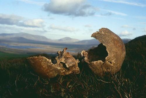 Broken Vessel, Corrain Peninsula, Co Mayo 1998