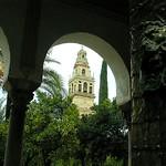 Córdoba: Torre de la Catedral.