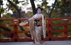 Iwai-mai  #1 (Onihide) Tags: kyoto maiko mapleleaf kitanotenmangu kamishichiken momijien naokazu ichiteru katsuru onihide iwaimai