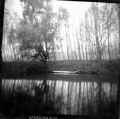 The form of silence. (candido baldacchino) Tags: camera autumn bw 120 river holga toycamera po picnik 120s holga120s fotopovera 123toycamera onlyholga primitivephoto autaut photoalternative candidobaldacchino formofsilence