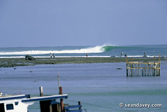 A perfect barreling wave on an outside reef, somewhere in West Java, Indonesia. (Sean Davey Photography) Tags: pictures seascape color nature horizontal indonesia energy surf power wave clean alternativeenergy dreamy curl westjava swell whitewash lineup greenenergy greenpower oceanwave seawave alternativepower oceanswell greenphotography seandavey oceanpower seaswell photographyfineart finephotographyart notrecorded curlingwave wavesenergy seawaveenergy oceanenergy oceanwavepictures seandaveyphotography seandaveyfineart