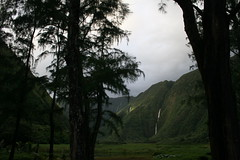 IMG_4458 (wrongfrench) Tags: hawaii bigisland waipio waimanu