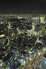 Tokyo 2009 - 六本木 - 森ビル(5)