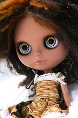 Gorgeous owl eyes