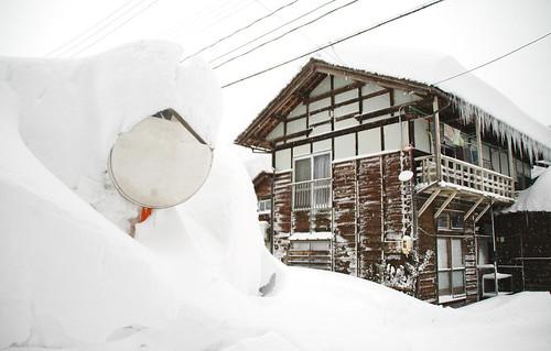 Snow in Sakae
