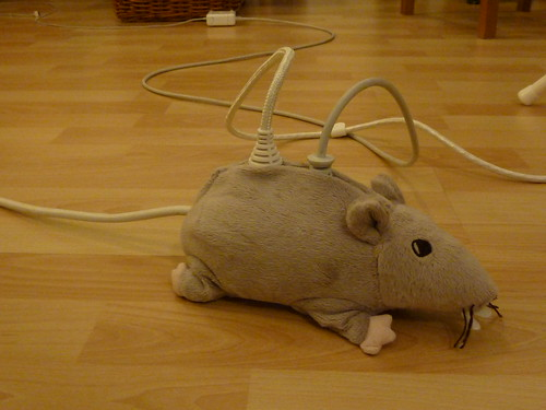 e-rat