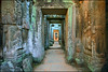 Doors to Heaven (Souvik_Prometure) Tags: angkorwat explore siemreap phnombakheng frontpage taphrom preahkhan banteaysrey banteaysrei banteaykdei sigma1020mm bayontemple prahkhan anawesomeshot nikond90 flickrdiamond theunforgettablepictures souvikbhattacharya