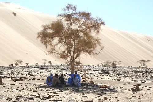 2010 février Mauritanie (240)