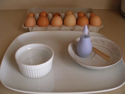 Materials for Blowing Eggs