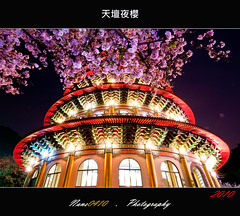 (Sakura) (nans0410) Tags: nikon sakura   nightexposure       tokina11~16mm