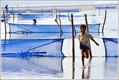 The puzzle of possibilities [..Cox's Bazar, Bangladesh..] (Catch the dream) Tags: ocean blue boy sea reflection water fishing order tide run line explore nets frontpage seashore economy arrangement bangladesh array chittagong coxsbazar gettyimagesbangladeshq2