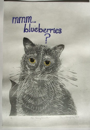 Sammy wants blueberries