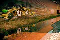 [Swamp] Type Thing (underthewaves) Tags: california reflection brick art water wall graffiti gaze 32 milpitas 2010 stonetemplepilots ef50mmf14usm eos5dmarkii lightroom3beta2 inaccurategeotag