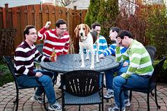 318/365 Floyd and five of his sexy friends! (Paguma / Darren) Tags: dog man male me hound clones clone floyd tamronspaf1750mmf28xrdiiildasphericalif