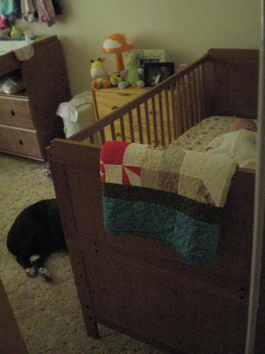Guarding the crib
