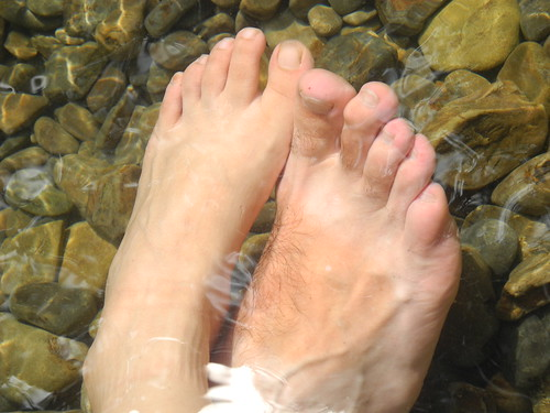 Feet in the River  (by Queenie)