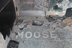Ex-Moose Lodge (plasticfootball) Tags: litchfield illinois terrazzo mastic mooselodge fraternal abandoned