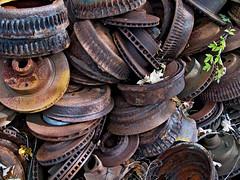 (Jay Morrison) Tags: ontario cars metal rust decay automotive junkyard scrapyard autowreckers mcleans jaymorrison