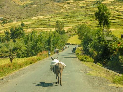 Road to Lalibela, Ethiopia