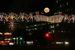 Festive Lights - South Africa (South African Tourism) Tags: travel tourism southafrica festivelights southafricantourism