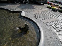 Ystad Square Fountain (futuraprime) Tags: skne ystad
