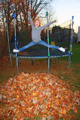 Maddie jumping in the leaves
