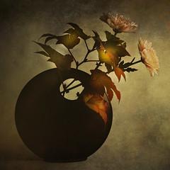*K* (nene-ane(ON - OFF)) Tags: stilllife textures rs oa imagepoetry artistictreasurechest miasbest flowerquest worldsartgallery flickrvault magicunicornverybest