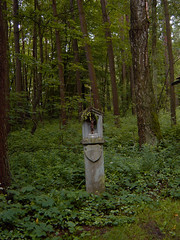 Hiking - Langquaid (haegar52002) Tags: felder wiesen wald 2009 wanderung langquaid
