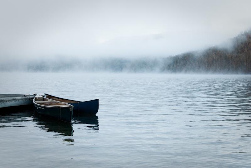 Day 36: Foggy