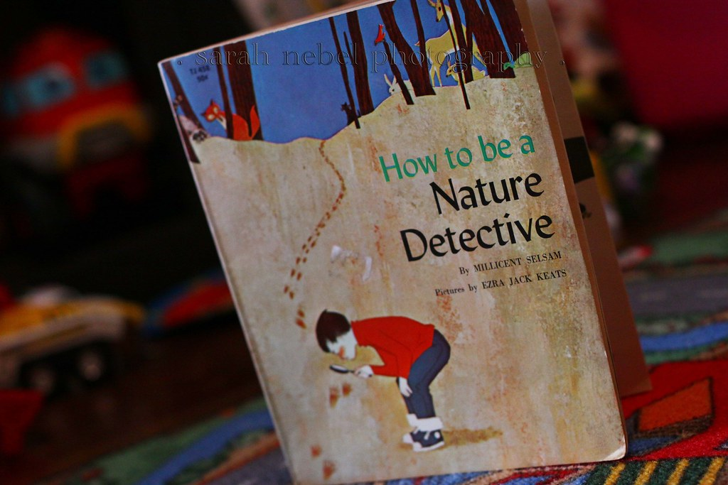 . how to be a nature detective .