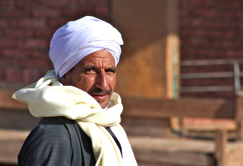 Cairo - Camel Market - 32