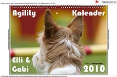 Agility-Kalender-Elli-Gabi-2010-HD_export-1