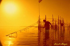 When the sun rises over fishing     (Ahmed Albaqer  ) Tags: sea bahrain fishing sunnyday sunshines nikoncamera sunrising   flickrdiamond theunforgettablepictures  micarttttworldphotographyawards micartttt   michaelchee