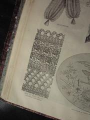 1873 pattern