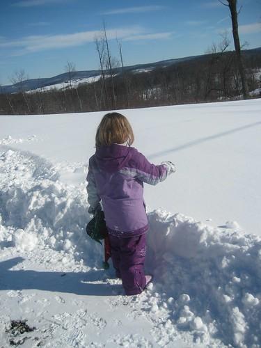 Lex Examining the Snow