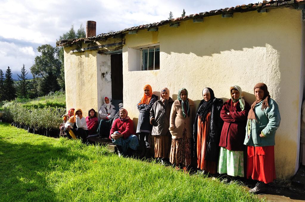 Mujeres de Túnez