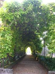 villa pisani giardino (Portale Turismo del Veneto) Tags: villa pisani str