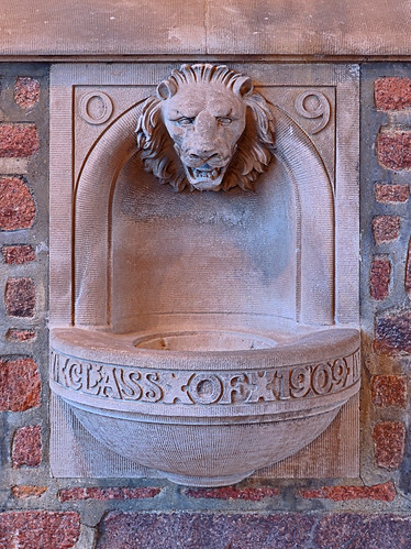 Washington University, in Saint Louis, Missouri, USA - Lion fountain at Brookings Hall